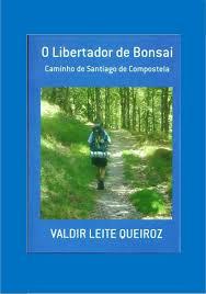 Santa Casa de Barcelos arrived in Santiago de Compostela and says that living the Way is the true goal